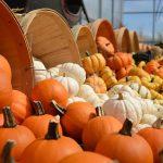 All'orizzonte… Halloween! 31 ottobre